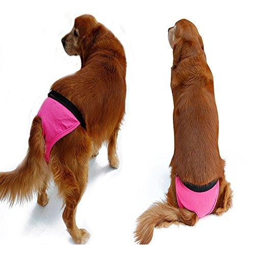 Pee Wee Hose (s-lifeeling angenehm weiblich Hund Windeln Pet Pet Puppy Hose absolut einfach zu auf/aus)