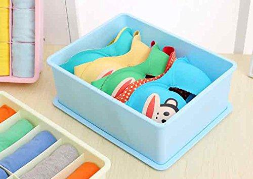 House of Quirk 15 Slot plastic bra underwear sub compartment storage box