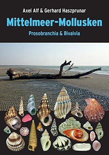 Mittelmeer-Mollusken: Prosobranchia & Bivalvia
