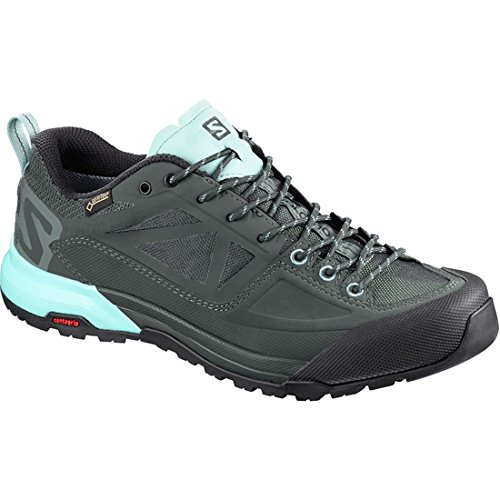 51tZq2AgjaL. SS500  - SALOMON Women's X Alp Spry GTX W Low Rise Hiking Boots