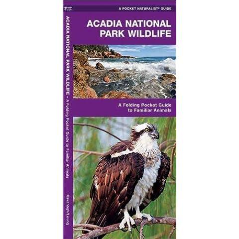 Acadia National Park Wildlife: A Folding Pocket