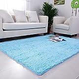 DULPLAY Korallen Teppich,Decorationindoor Teppich Europäische Einfache Sofa Seite Teppich Pflegeleicht Wohnzimmer Boden Küche Waschbar-Blau 70x160cm(28x63inch)