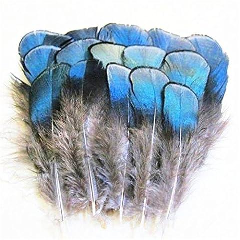 ERGEOB 100 stück blau Kupfer Hühnerfedern Fertigkeit