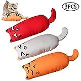 nuosen Katzenminzen-Spielzeug, 3 Stück, kreatives Kissen zum Kratzen von Haustieren, Katzenminze, zum Schleifen, Kauen, Zähne Reinigung für Katzen