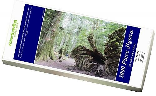 photo-jigsaw-puzzle-of-old-growth-forest-in-cathedral-grove-macmillan-provincial-park-vancouver