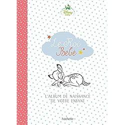 Le roi bébé: L'album de naissance de votre enfant