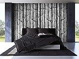 Tapete by COUTUDI, Natur Birke Baum - Wald Holz Vliestapete Wandbilder, PVC frei Fine Decor, 0.53m B*10m L
