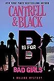"""B"" is for Bad Girls (Malibu Mystery Book 2)"