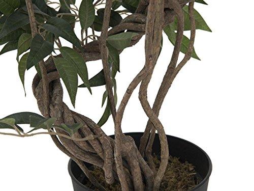 artplants – Künstlicher Ficus Exotica MIYU mit Naturstamm, 130 cm – Deko Feigen Baum/Kunstpflanze