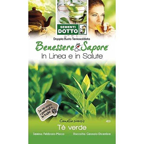 Galleria fotografica Sementi Dotto - Tè Verde