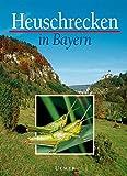 Heuschrecken in Bayern (Grundlagenwerke)