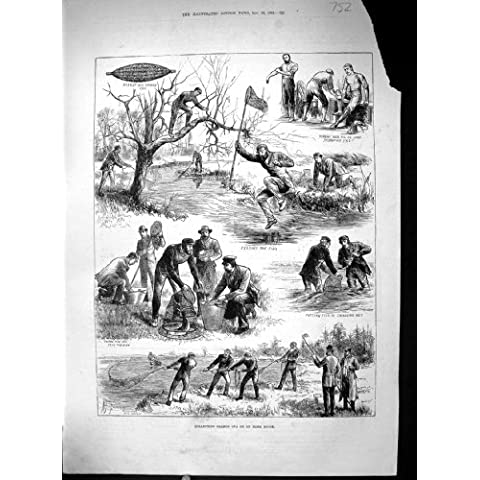 Recogiendo la Antigüedad De Color Salmón de la Red de la Crinolina de los Pescados del Río de Irlanda de los Huevos Imprima 1884
