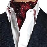STTLZMC Herren Krawattenschal Ascotkrawatte Schal Fashion Gentleman Cravat Ties,color 8,One Size