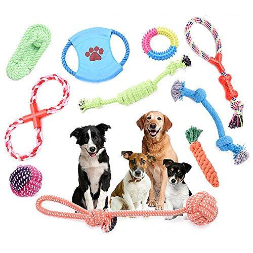eug Pet Dog Rope Kauen Spielzeug Kleine Bis Mittlere Haustier Hunde Dauerhaft Zähne Knoten Seile, Bälle, Schuh, Flying Disc, Lachen Ball Interactive Spielzeug Set (10 Teile) (Hund Kauen Spielzeug)