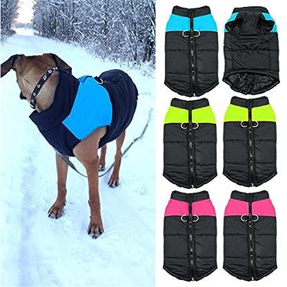 Treat Me Winter Dog Coat Warm Pet Jacket Raincoat of Nylon Fabric Cotton Filler Waterproof Protective Adjustable 3