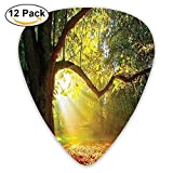 Majestic Mighty Oak Tree With Largely Broader Leaves Forest Sun Beams Rays Nature Guitar Picks 12/Pack