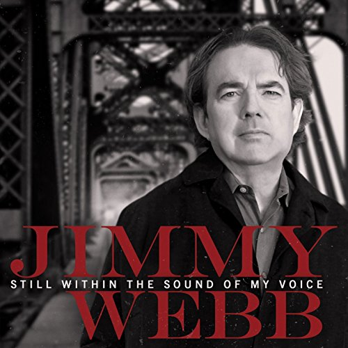 Still within the sound of my voice [Import allemand]
