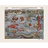 Reproduction Antique Print of Monstra Marina & Terrestria, Quae Passim in Partibus Aquilonis Inueniuntur, by Sebastian Munster Size 42 x 33 cm
