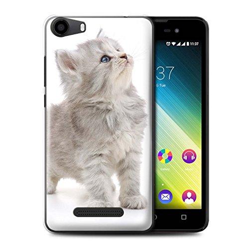 Stuff4® Hülle/Case für Wiko Lenny 2 / Neugieriges Kätzchen Muster/Süße Kätzchen Kollektion -