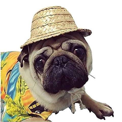 Jinberry Chat Chapeau de Paille Mignon Fait à la Main avec Cordes Réglable, Design Unique Costume pour Chien, Chat ou d'autres Animaux - L (16 cm)