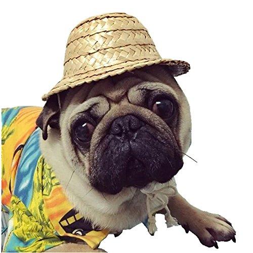 Jinberry Süß Handgemacht Mexikanischen Stil Strohhut Hüte mit Verstellbares Seil Hut für hunde Katzen und andere Haustiere - L (16cm) (Atlanta Kostüme)