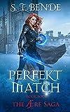 Perfekt Match (The Ære Saga Book 4) (English Edition)