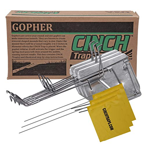 Cinch Gopher Trap with Tunnel Marking Flag (Large) Heavy-Duty, Reusable Rodent Trapping System | Lawn, Garden, and Outdoor Use | (Pack Of 3) -