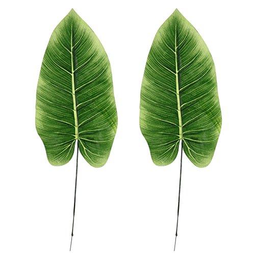BESTOYARD 2 Stücke Künstliche Single Leaf Grün Immergrüne Blätter für Haus Küche Partydekorationen Handwerk (Immergrünes Blatt)