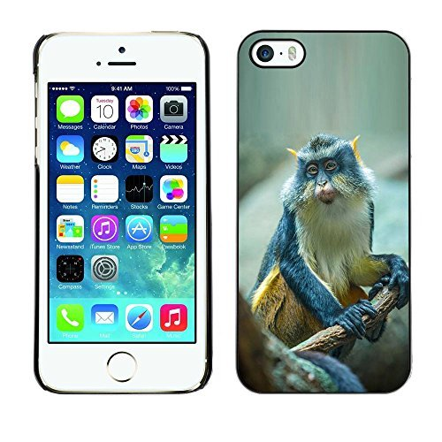 plastic-shell-protective-case-cover-apple-iphone-5-5s-ape-monkey-exotic-tropical-xptech
