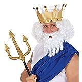 Perruque Zeus roi Neptune avec barbe perruque d'homme carnaval perruque de carnaval perruque carnaval Olympe perruque de Zeus