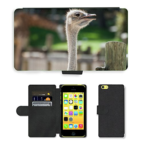 GoGoMobile PU Leather Flip Custodia Protettiva Case Cover per // M00118669 Autruche animaliers Faune // Apple iPhone 5C