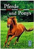 Pferde und Ponys [3. illustrierte Auflage] (Sachbuch)