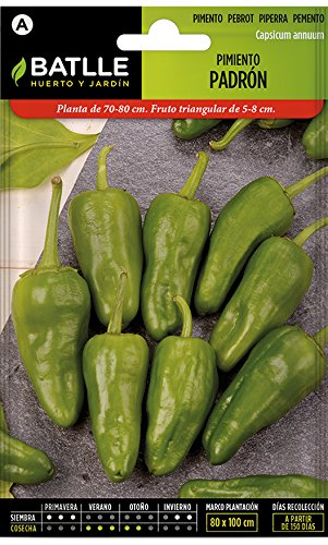 Batlle Gemüsesamen - Chili Paprika - Pimiento Padrón (255 Samen)
