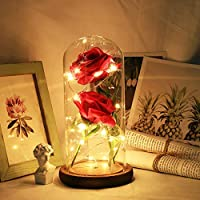 IsEasy Beauty and The Beast Rose Kit Red Rose Flower LED Light in Glass Cover Dome on Wooden Base for Home Decor Holiday Party Wedding Anniversary
