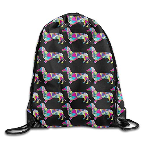 Prismatic Triangular Dachshund Unisex Drawstring Backpack Travel Sports Bag Drawstring Beam Port Backpack. - The North Face Insulated Belt