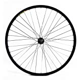 Best Bicycle Wheels - Wilkinson Front Wheel 36 Hole Single Wall MTB Review