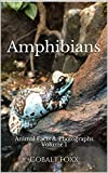 Facts about amphibians (frogs, newts, salamanders and toads) printed over a color photograph. Every word is printed over a color photograph of an amphibian. Also contains 57 color photographs of frogs, newts, salamanders and toads.