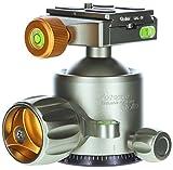 Rollei Lion Rock Stativkopf 20 - Robuster Panorama Kugelkopf 360° aus Aluminium mit einer Belastbarkeit von bis zu 20 kg - inkl. Schnellwechselplatte, Arca Swiss kompatibel