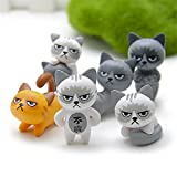 Best Cat Toys Set - Cute Lucky Cats Micro Landscape Kitten - Grumpy Review