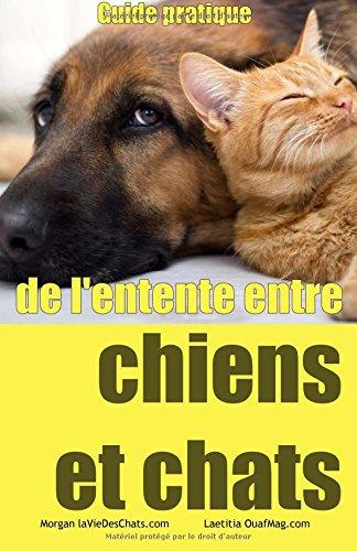 guide-pratique-de-lentente-entre-chiens-et-chats