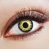 aricona Kontaktlinsen Farbige Kontaktlinse Sunflower   – Deckende Jahreslinsen für dunkle und helle Augenfarben ohne Stärke, Farblinsen für Karneval, Fasching, Motto-Partys und Halloween Kostüme