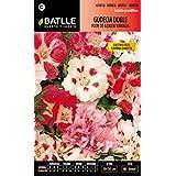 Semillas Batlle 094301BOLS - Godecia doble flor de azalea variada