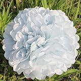ANKKO 10ST Pompons Seidenpapier Pom Pom Blumen Ball für Festival Hochzeit Geburtstag Party im freien Dekoration - Weiß