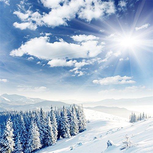 aaloolaa 1,8x 1,8m Vinyl Fotografie Hintergrund Weihnachts Weihnachtsbaum Blue Sky White Cloud Snow Scene Hintergründe für Foto-Shootings Party Neugeborene Liebhaber Erwachsene Kid Baby Persönlichen Hochformat Szene Requisiten Video Shooting Studio 6x 1,83m