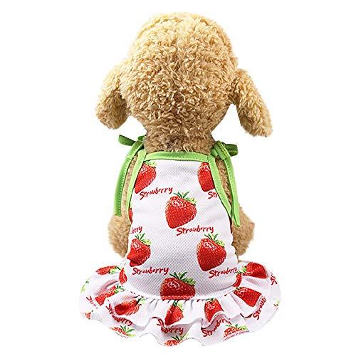 YWLINK Sommer Haustier RüSchen Sling Kleid HüNdchen Prinzessin Strand Party SchöNe Erdbeere/Ananas Puppy Kleid (Rot,L)
