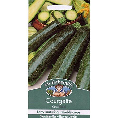 Graines de M. Fothergill - Courgette Zucchini