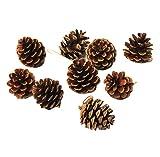 Milopon, 45pigne d'abete per decorazioni natalizie, coni di pino, minuteria per decorare l'albero di Natale, ornamenti per home decor, marrone, 4cm