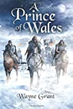 A Prince of Wales: Volume 5 (The Saga of Roland Inness)
