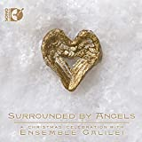 Surrounded By Angels [Ensemble Galilei] [Sono Luminus: DSL-92173] [DVD AUDIO]