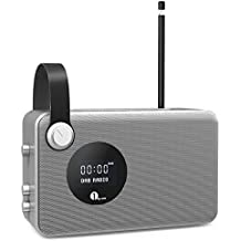 1byone DAB / FM Bluetooth Radio, Radio digital portátil con el despertador / FM / Pantalla LCD / 3.5mm Aux-in ,color plata & gris